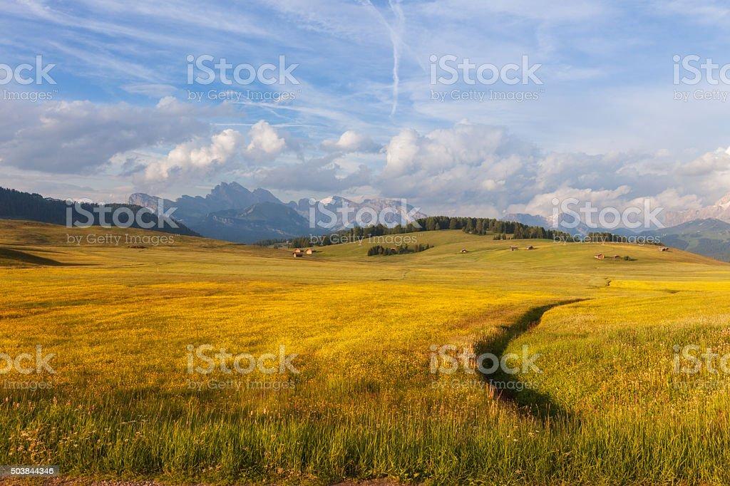 Panorama of Alpe di Siusi stock photo