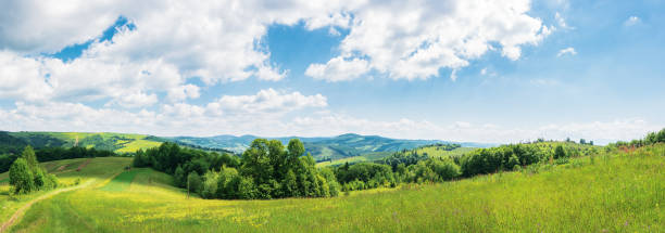 panorama of beautiful countryside in summer stock photo