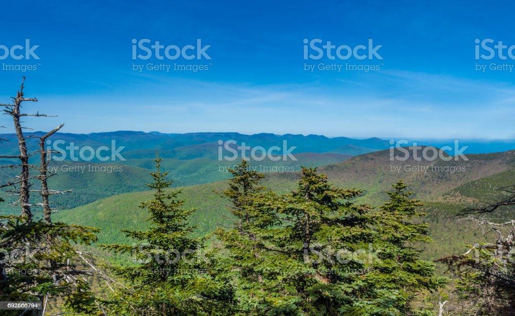 Panorama of Catskill Mountains Panorama of Catskill Mountains as seen from Slide Mountain Apostasy Stock Photo