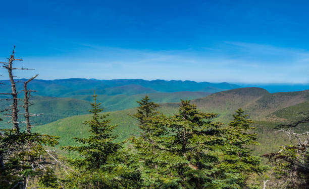 Panorama of Catskill Mountains Panorama of Catskill Mountains as seen from Slide Mountain apostate stock pictures, royalty-free photos & images