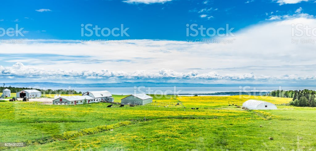 Panorama of Charlevoix region of Quebec Canada with aerial view of farm in summer and Saint Lawrence river stock photo
