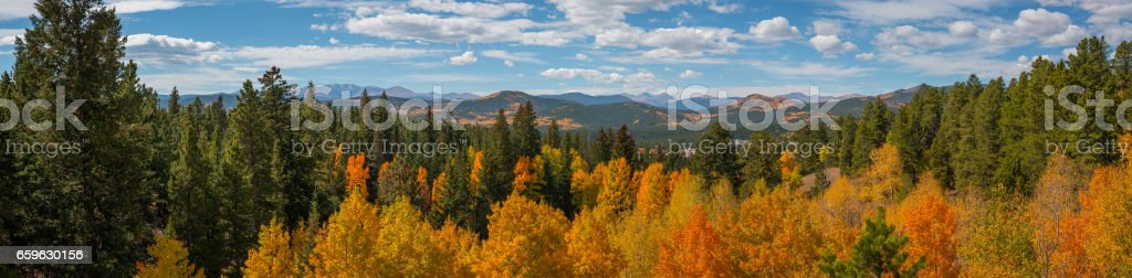 Panorama Of Colorful Tree tops near Rocky Mountain National Park stock photo