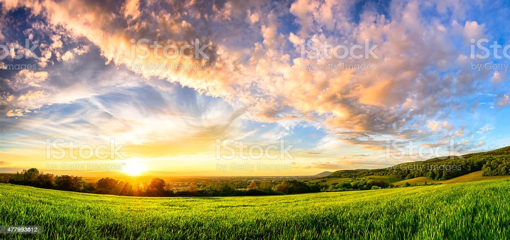Panorama of a colorful sunset on a fresh green meadow, wide format...