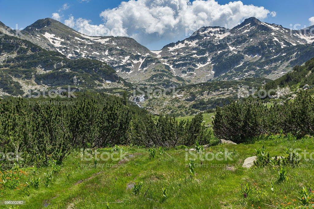 Panorama of Demirkapiyski chuki and Dzhano peaks, Pirin Mountain Lizenzfreies stock-foto