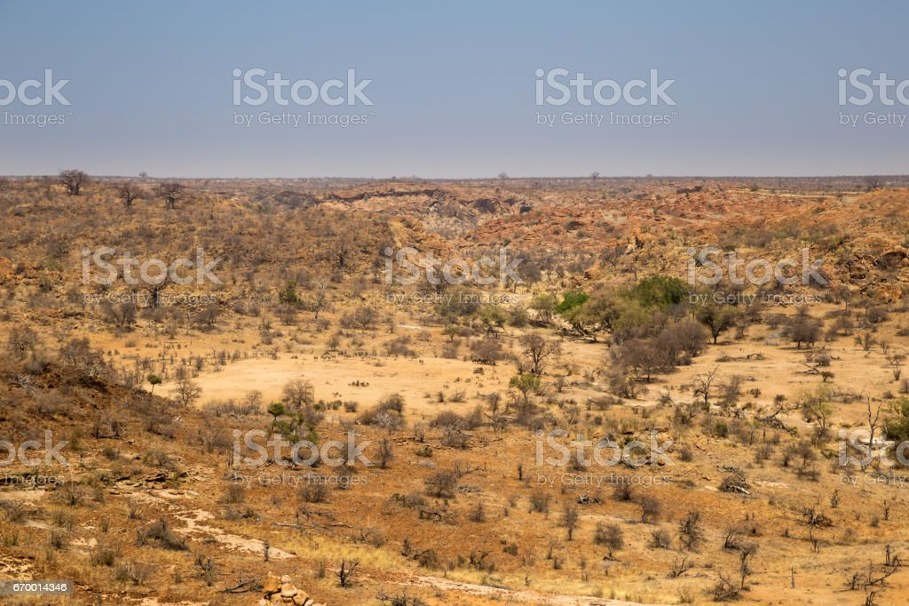 Panorama of Desert Landscape in Mapungubwe National Park, South Africa stock photo