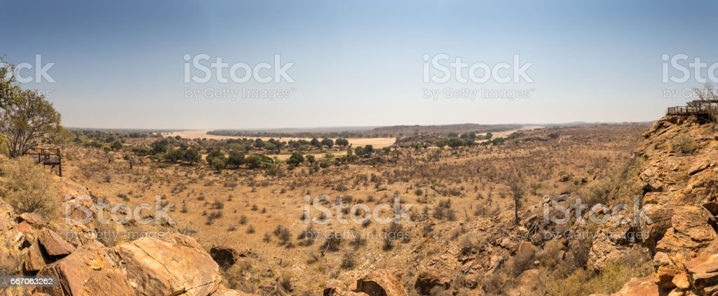 Panorama of Desert Landscape with Dry River Bed in Mapungubwe National Park, South Africa stock photo