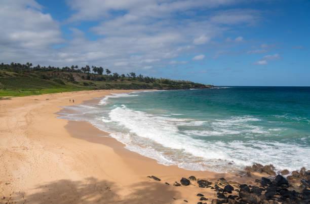 Panorama of Donkey Beach in Kauai stock photo