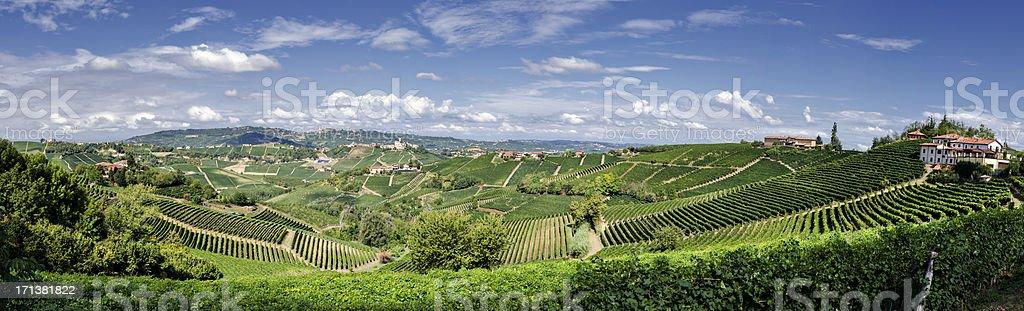 Panorama di fattoria casa in vigneto - foto stock