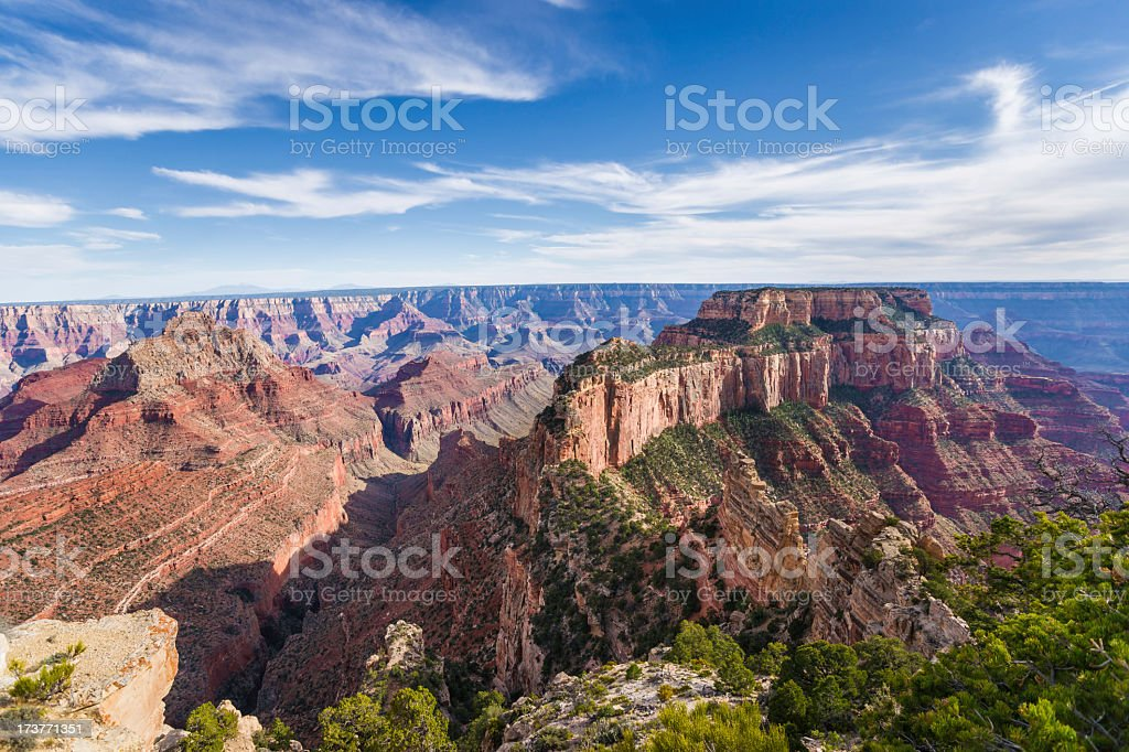 Panorama of Grand Canyon from Cape Royal on North Rim stock photo