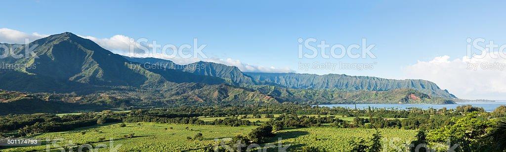 Panorama of Hanalei Bay in Kauai stock photo
