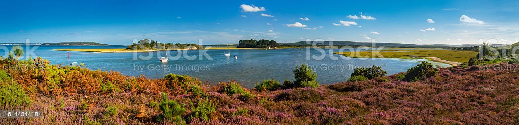 Panorama of Islands in Poole Harbour with Heather foreground stock photo