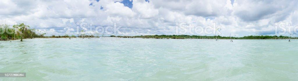 Panorama de la laguna con manglares - foto de stock