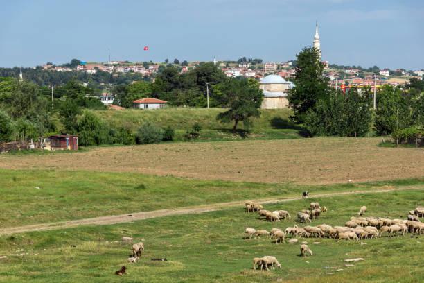 panorama des landes in der nähe der stadt edirne, ostthrakien, türkei - edirne stock-fotos und bilder