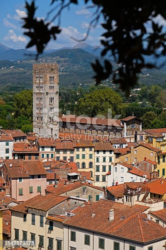View of Lucca from the top of the Guinigi tower, Tuscany (Italy).