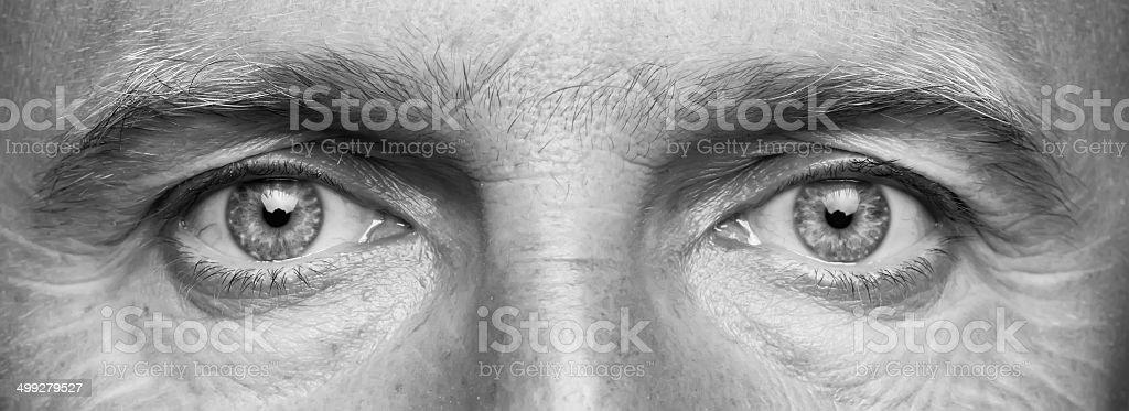 Panorama of men's eyes stock photo