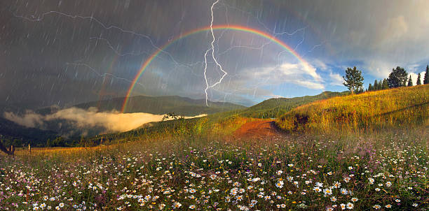 panorama of mountain meadows in Transcarpathia stock photo