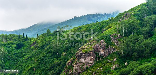 istock Panorama of Mountain Ridge of Mixed Forest, Rock Outcrops on a Misty Summer Morning with Clouds Flowing Low through the Peaks. Altai Mountains, Kazakhstan. 1167318722