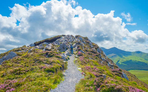 Panorama of mountains, marshy land and heathland of Connemara National Park in summer stock photo