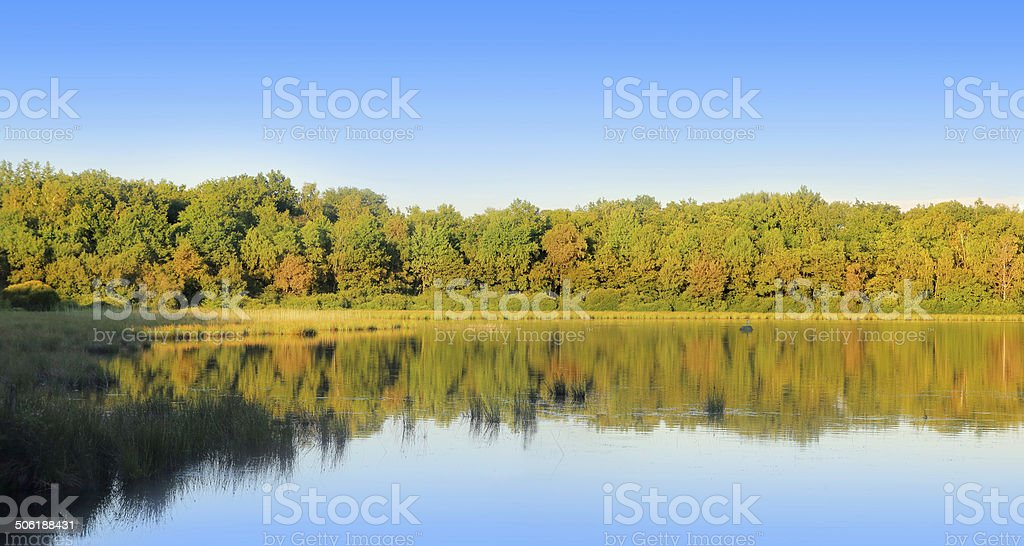 Panorama of natural pond with tree reflection in water stock photo