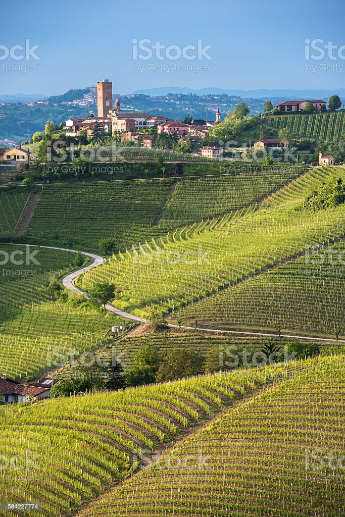 Panorama of Piedmont vineyards and Barbaresco town stock photo