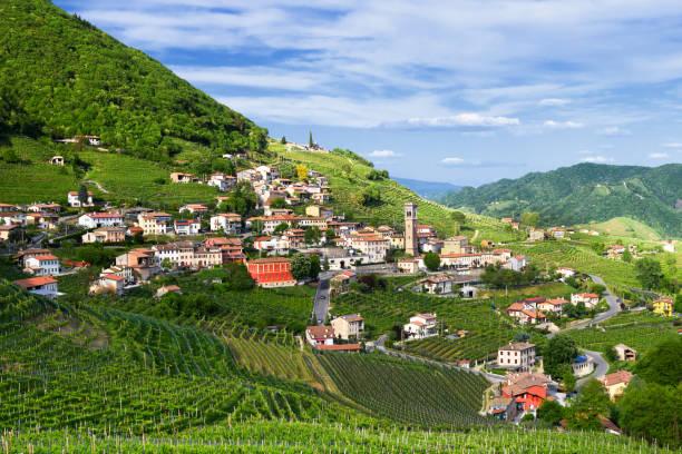 panorama von santo stefano-valdobbiadene (tv) land prosecco weinberge im frühjahr - venezien stock-fotos und bilder