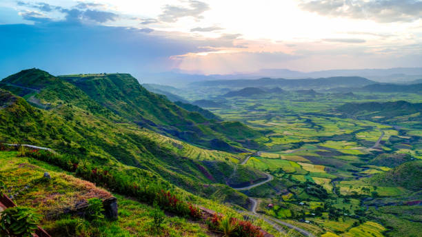 Best Simien Mountains National Park Stock Photos, Pictures