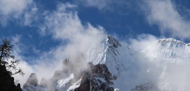 karlı dağ zirveleri mavi gökyüzü ve beyaz bulutlar ve çam ağaçları altında panoraması - ganzi tibet özerk bölgesi stok fotoğraflar ve resimler