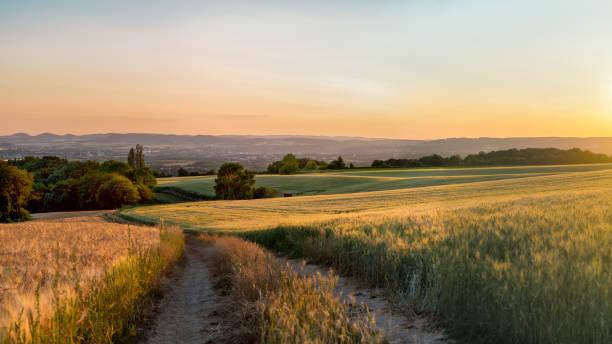 Panorama von den wunderschönen Sonnenuntergang im Westen Deutschlands, ein Feld von Weizen mit einer unbefestigten Straße, in der Ferne eine kleine Stadt. – Foto