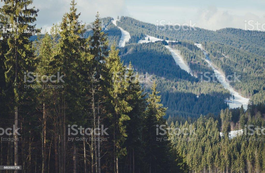 Панорама Карпатских гор. Горнолыжные трассы в горах и хвойный лес royalty-free stock photo