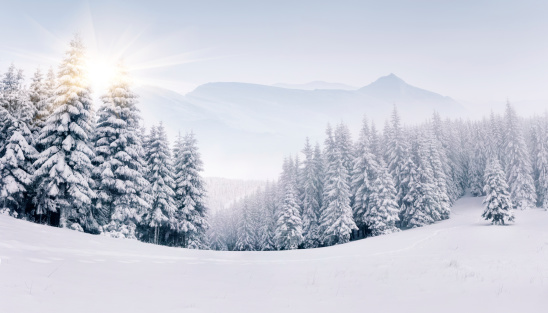 Panorama of the foggy winter mountains