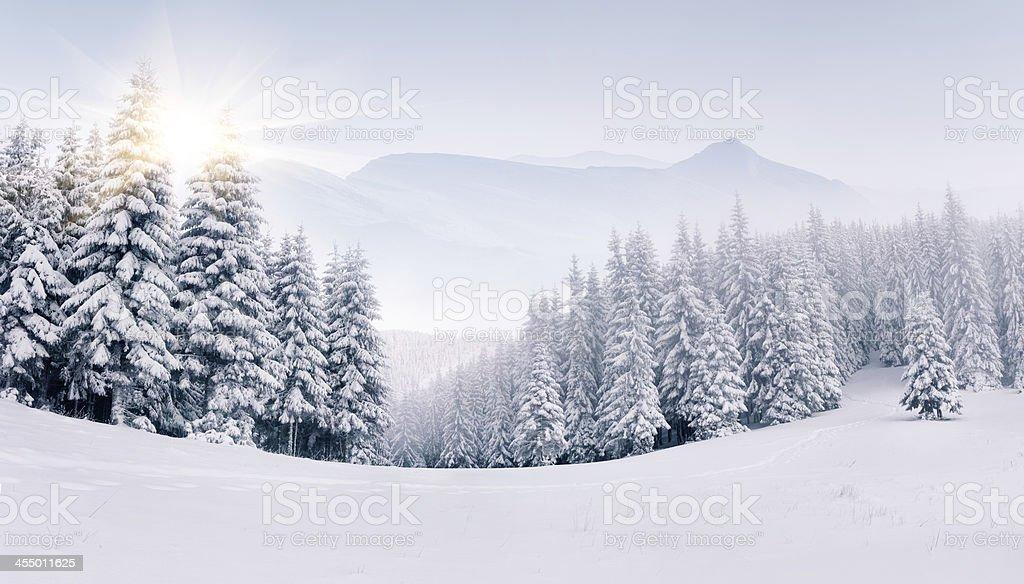 Panorama de las montañas de invierno de niebla - foto de stock