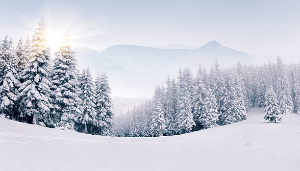 panorama of the foggy winter mountains - non urban scene stock pictures, royalty-free photos & images