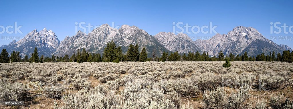 Panorama of The Grand Tetons royalty-free stock photo