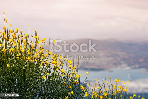 istock Panorama of the Greek city of Volos at sunset. Volos Greece. View from the mountain on the Volos 817514304