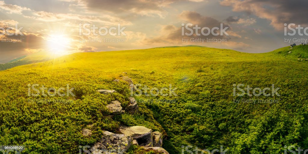panorama of the hillside meadow at sunset - Royalty-free Atmospheric Mood Stock Photo