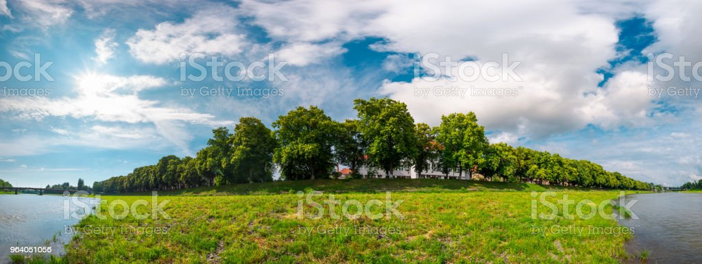 panorama of the longest linden alley in blossom - Royalty-free Alley Stock Photo