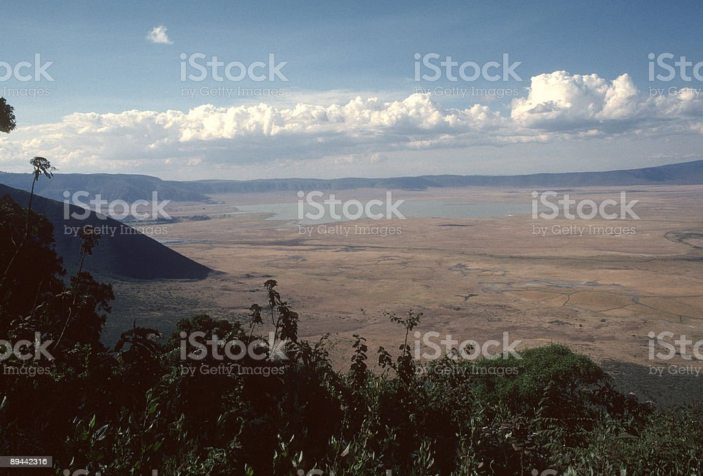 Panorama of the Ngorongoro Crater royaltyfri bildbanksbilder