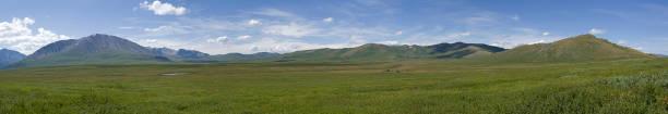 panorama of the oroi pass. altai, russia. - państwowy rezerwat przyrody altay zdjęcia i obrazy z banku zdjęć