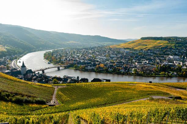 panorama över floden mosel - bernkastel kues höst bildbanksfoton och bilder