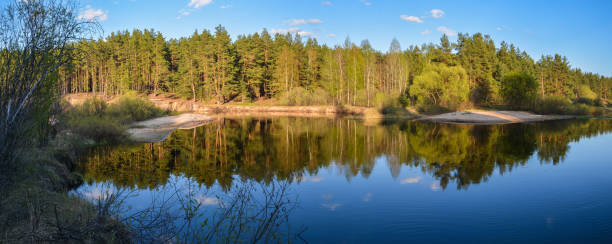 Panorama of the spring forest river. stock photo