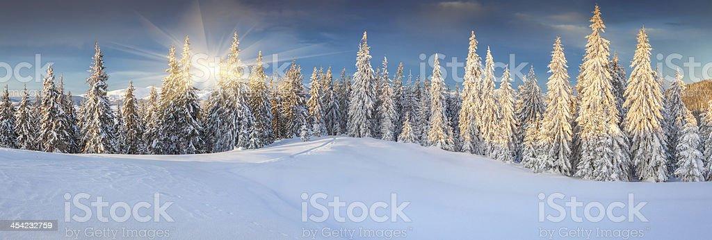 Panorama der sunny winter-Landschaft in Bergen – Foto