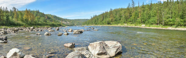 Panorama of the taiga river in the Polar Urals. Panorama of the taiga river in the Polar Urals. Summer water landscape in the north of Russia. shallow stock pictures, royalty-free photos & images