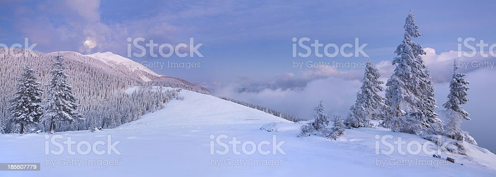 Panorama of the winter landscape in mountains royalty-free stock photo