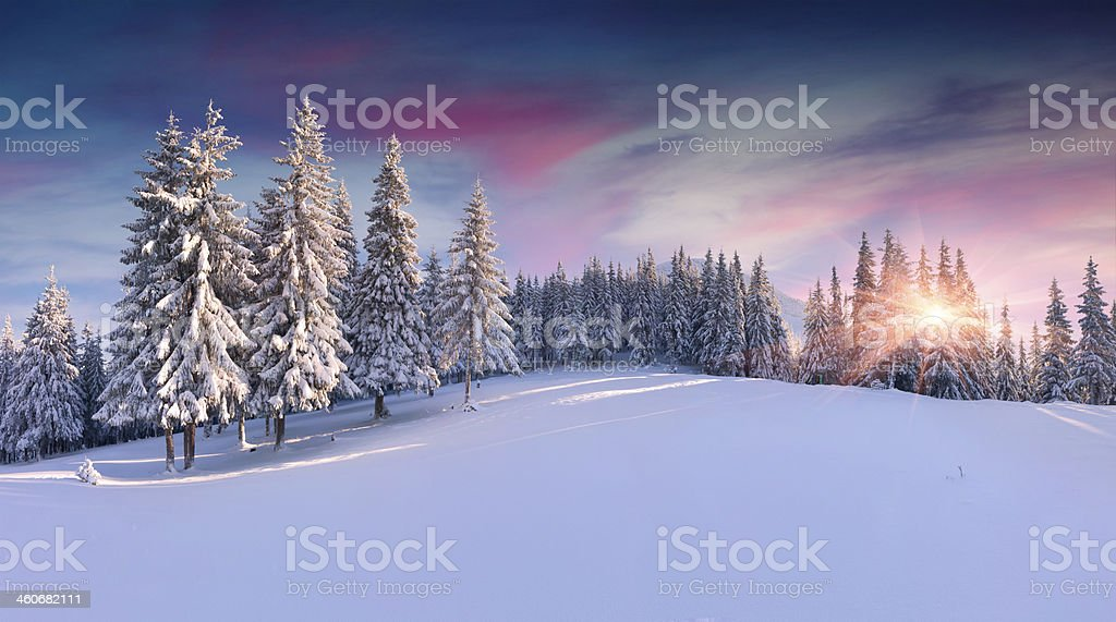 Panorama of the winter sunrise in mountains stock photo