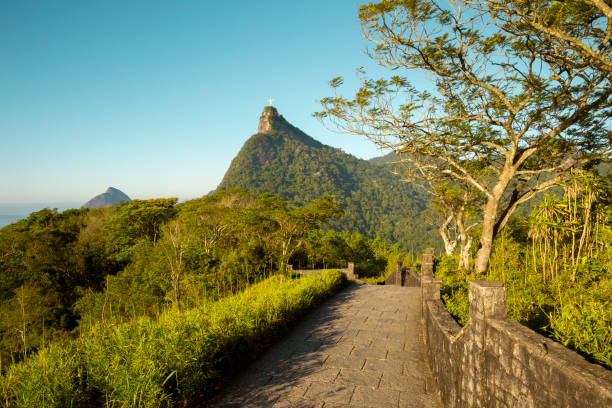 Panorama der Tijuca Wald und Berg Corcovado in Rio De Janeiro, Brasilien – Foto
