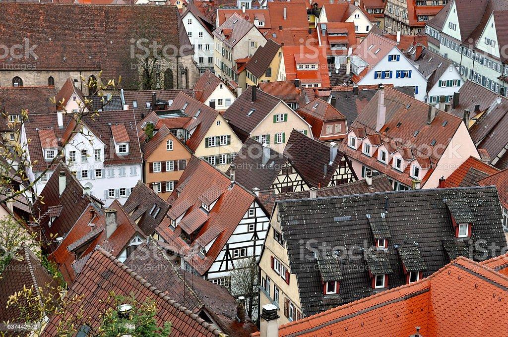 Panorama of Tubingen, Baden-Wurttemberg, Germany. stock photo