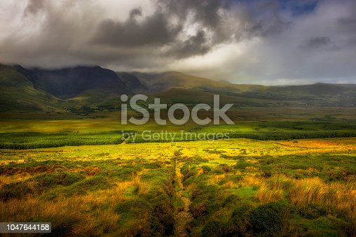 panorama of typical landscape in Ireland