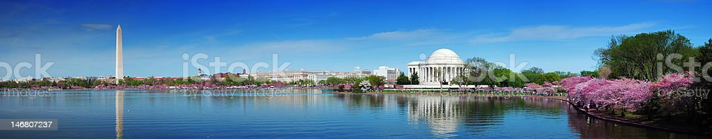 Panorama of Washington DC with cherry blossoms stock photo
