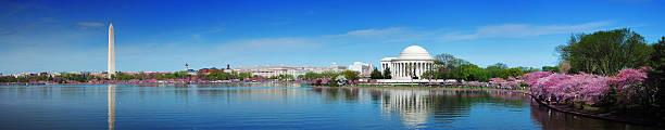 Panorama von Washington, DC, mit Kirschblüten – Foto