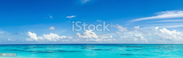 istock panorama of wild tropical Caribbean coast 482720212